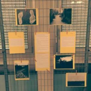 expo 2nde5 nouvelles et photos_Gaudy_Marmonnier